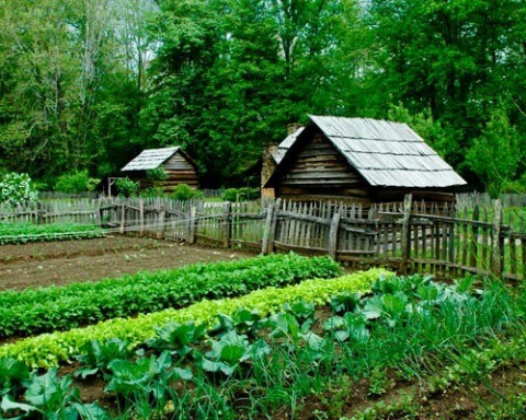 eco-friendly farming