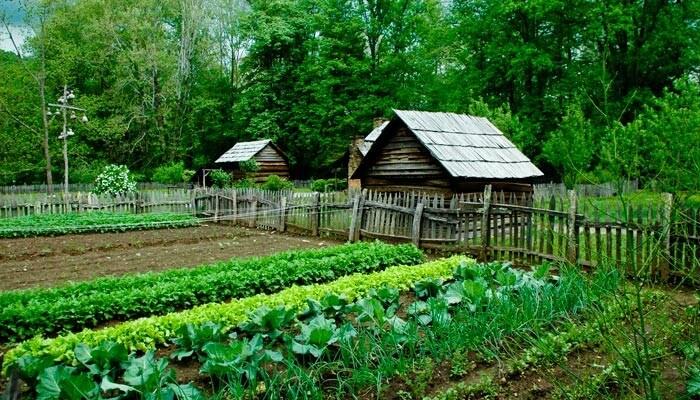 eco-friendly farming